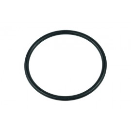 Replacement O-Ring for Laing D5/Alphacool VPP655/Alphacool VPP755/Swiftech MCP655 Pumps (95068)